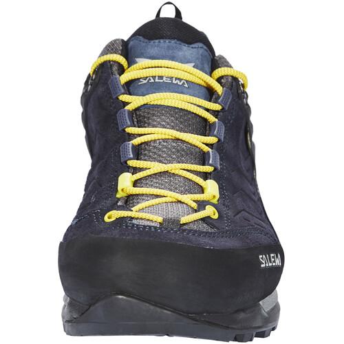 Salewa MTN Trainer GTX - Chaussures Homme - bleu
